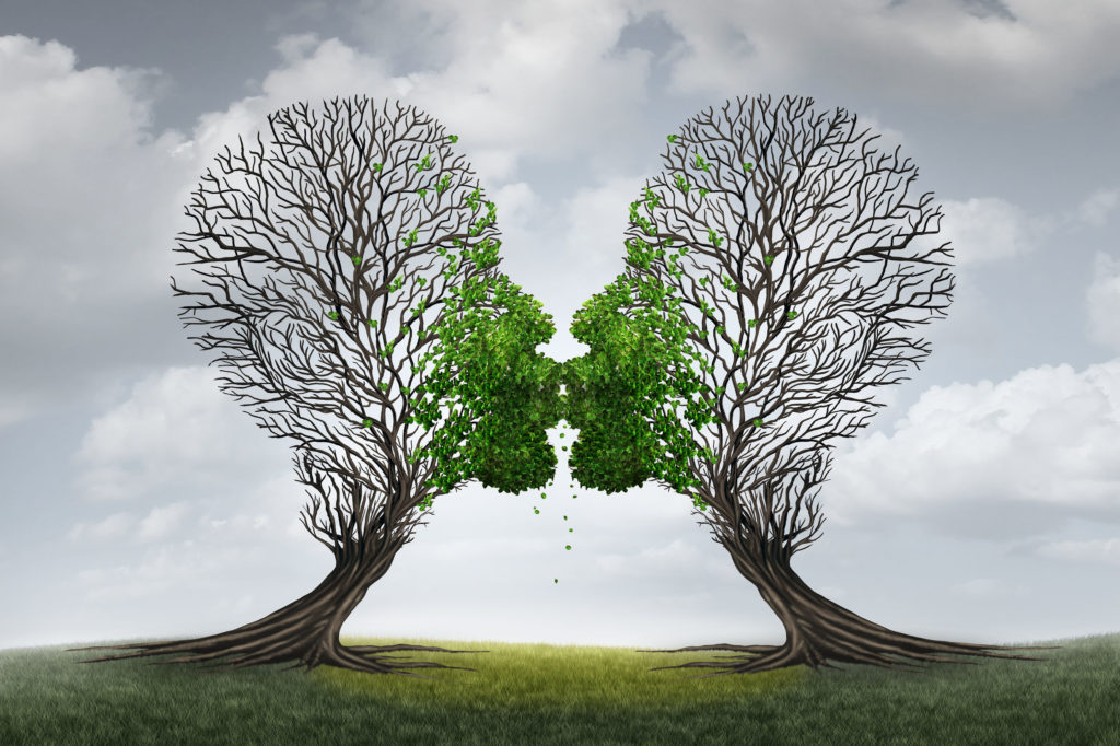 love therapy and relationship recovery counseling concept as two empty trees shaped as a human head attracted together as a devoted loving couple with kissing lips resulting in a return to a healthy passionate ralation.